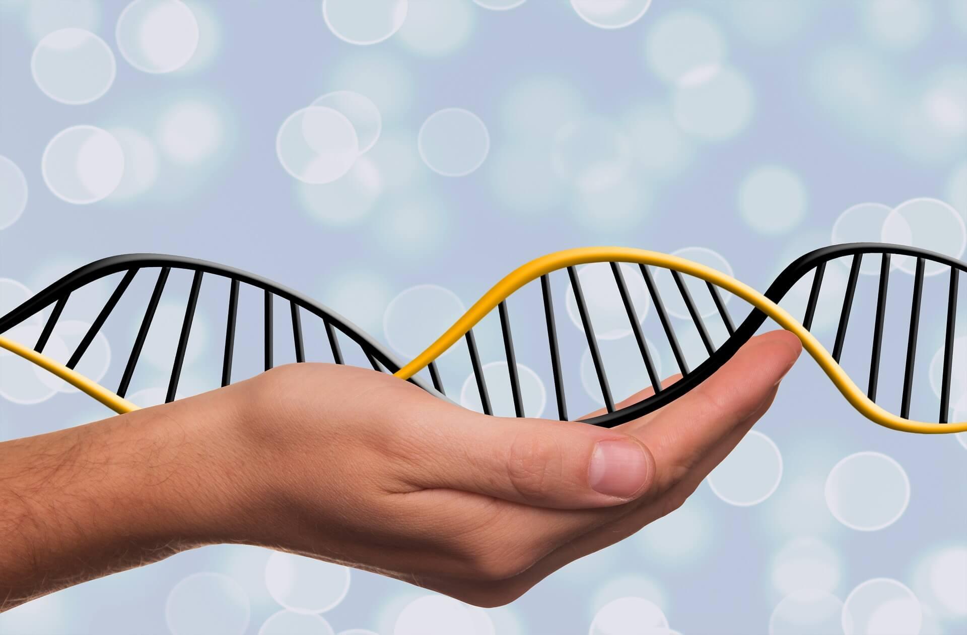 Civa Toksisitesine Karşı Genetik Yatkınlık